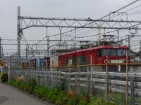 train-EH500-19-warabi-s.JPG