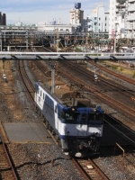 train-EF64-1018-warabi20091118-s.JPG