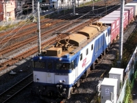 train-EF64-1036-warabi20091201-s.JPG