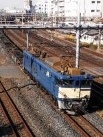 train-EF64-1019-warabi20091222-s.JPG