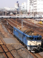 train-EF64-1019-warabi20091225-s.JPG