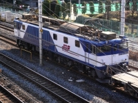 train-EF64-1009-warabi20100105-s.JPG