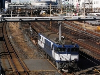 train-EF64-1007-warabi20100108-s.JPG