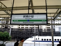 eki-name-musashikosugi-s.JPG