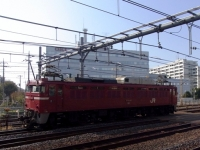 train-EF81-140-warabi20101109-s.JPG